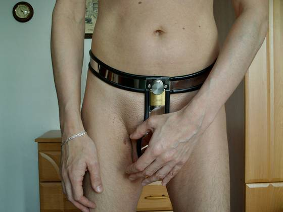steel collar bdsm