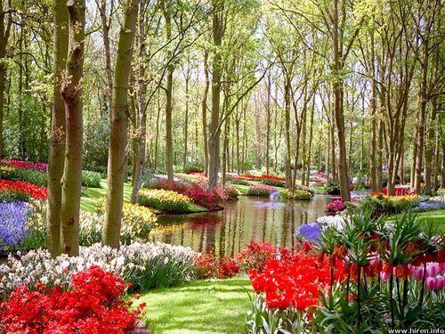 Garden Design Garden Design with Images Flower Gardens Flower