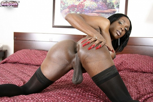 Ebony shemale fucks male