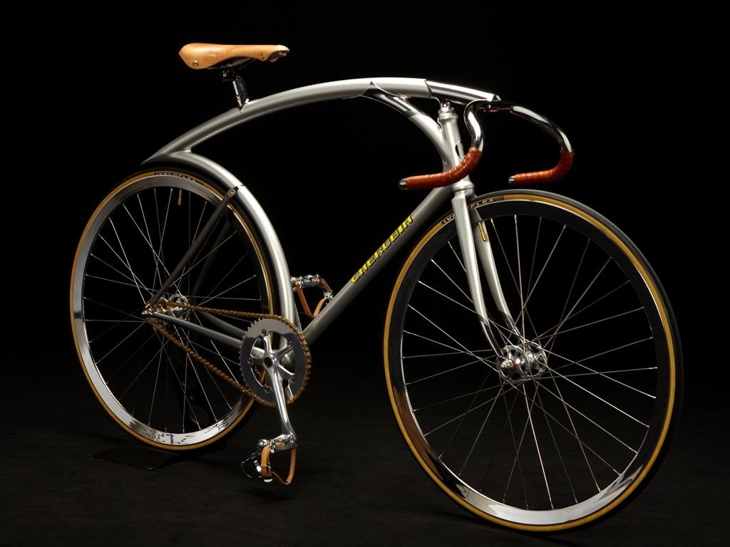 Cherubim-HummingBird-bike