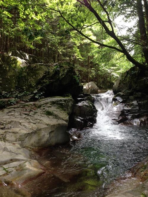Image of 天川村の夏