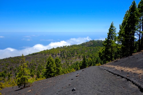 It's from the sea to the summit… and back to the sea again on the trails of La Palma.Photo: Bryon Powell