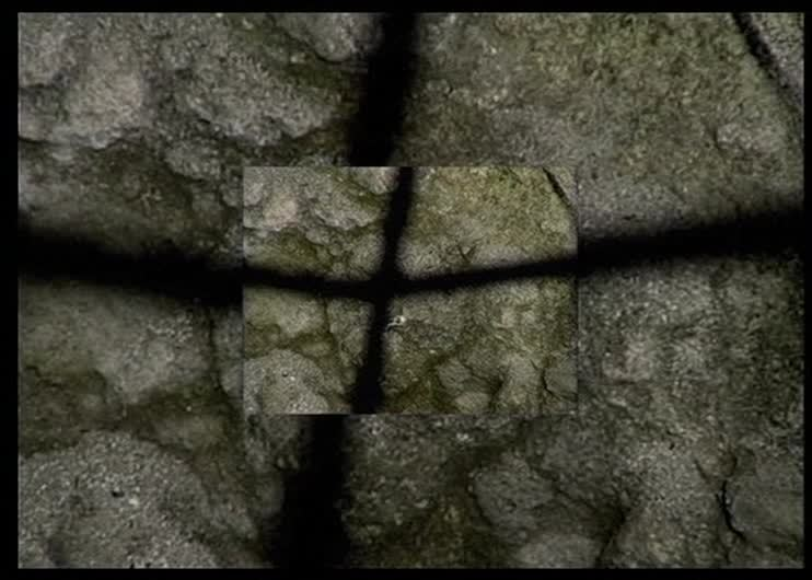GraviDance - Vladimir Kobrin - 2000 #gravidance#vladimir kobrin#experimental cinema#short film#russia