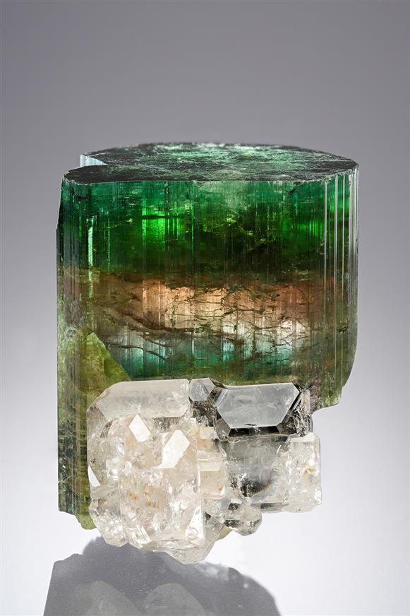 Beryl on Elbaite  Cruzeiro mine, São José da Safira, Doce valley, Minas Gerais, Brazil #Elbaite#Beryl#geology#minerals#crystals