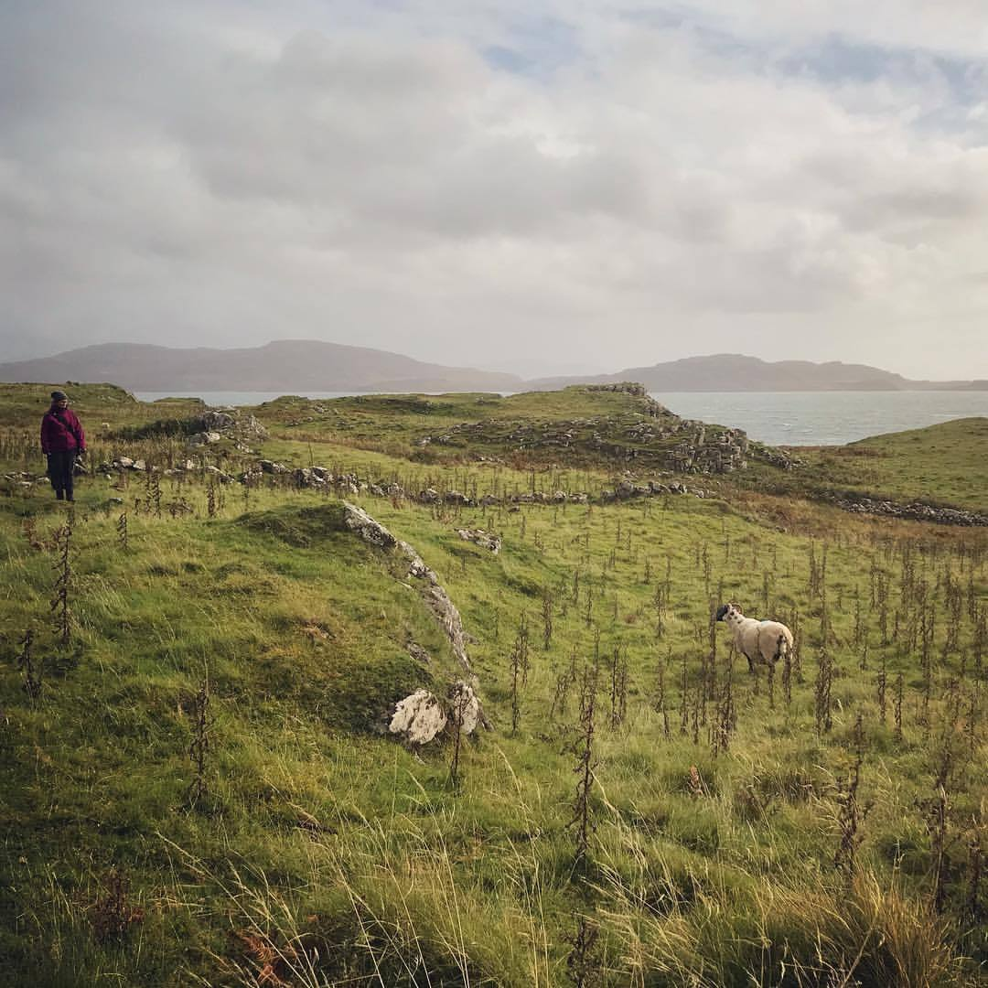 Oh, Mull is pretty, andere there's sheep! @jofabi happens to love sheep, here she is having a staredown. #twocampersinscotland ps. the sheep won. (at Calgary,...