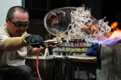 Inspired by nature and organic forms, guest artist Masahiro Sasaki created a blown-glass form with spikes last night in the Amphitheater Hot Shop. Once it's out of the annealer, Masahiro will take the form and sandblast away certain parts away. Stay tuned for an update when this piece is out of the annealer!