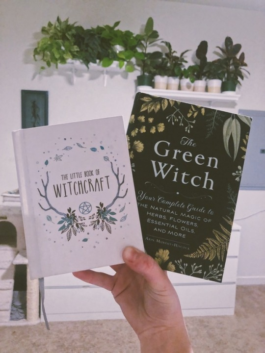 the little book of witchcraft   Tumblr