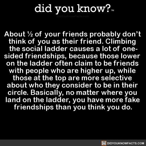 about-½-of-your-friends-probably-dont-think-of