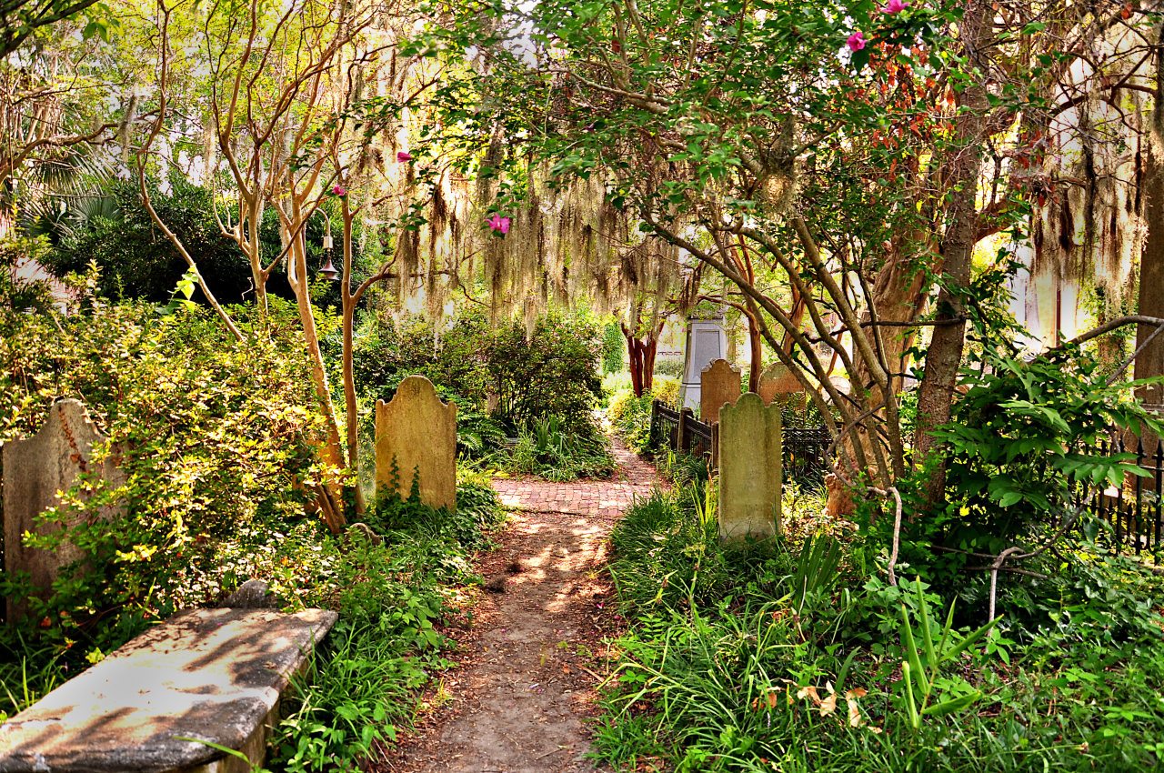 Unitarian Church cemetery in South Carolina #cemetary#south carolina#unitarian church#usa#travel#photography#plants#graveyard#southern gothic