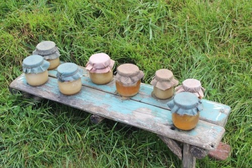 honey jars vintage rustic cottagecore warmcore cute pastel