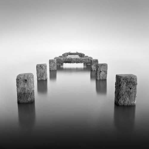 haiku photography artists on tumblr photographers on tumblr B&W Photography Black and White lensblr-network luxit PWS - photos worth seeing poets on tumblr poem original-photographers the photographers society black and white photography monochrome
