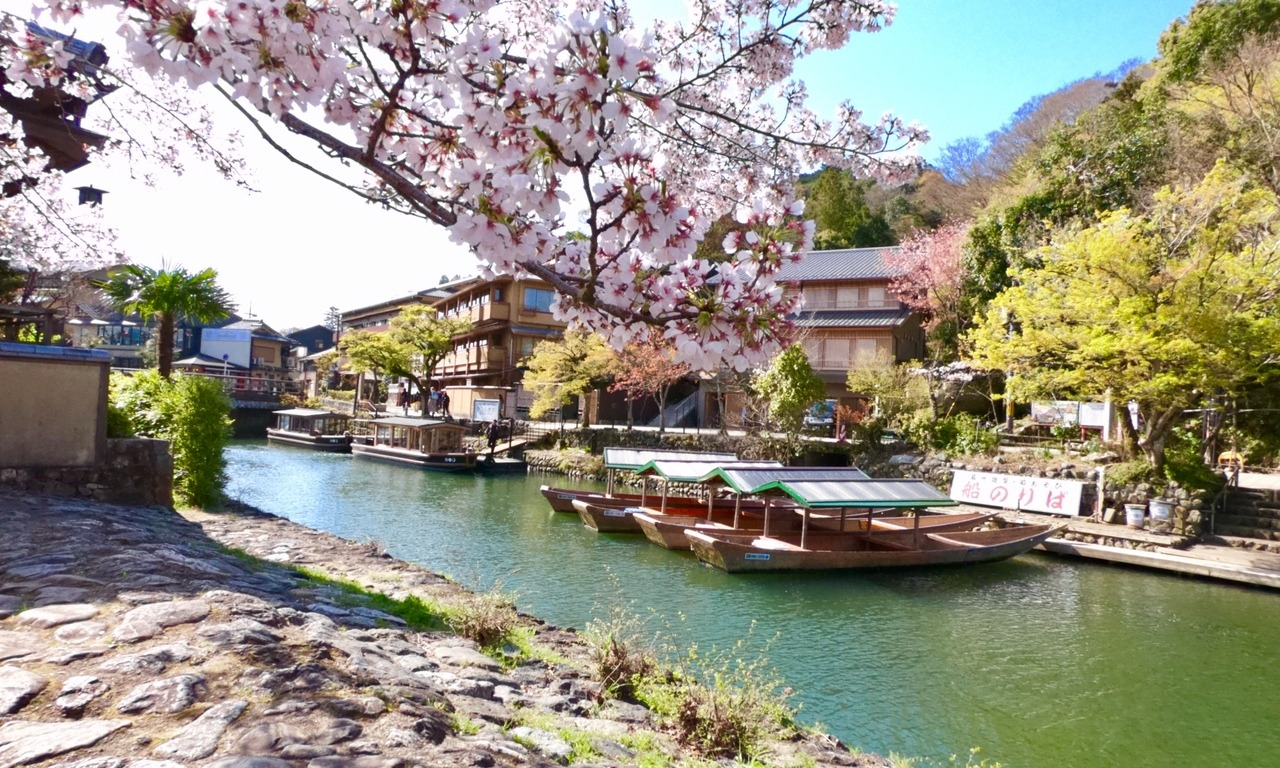 Arashiyama in Kyoto, Japan 2019 (OC) #Japan#travel#Adventure#adventure time#love#wonder#Wonderlust#backwardmaptravels#Solo travel #Solo Female Travel #Wanderlust#traveling alone#cherry blossoms#nihon#landscape#japanese#morning#gopro
