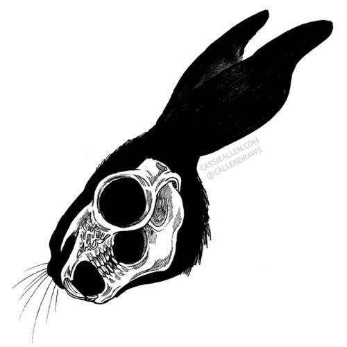 rabbit hare black rabbit black rabbit of inle watership down skull taxidermy animals art black and white ink