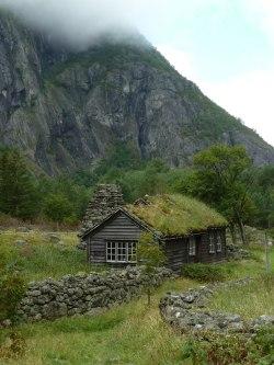 Grass-covered hut in Eidfjord / Norway (byAgios Fonasontas)