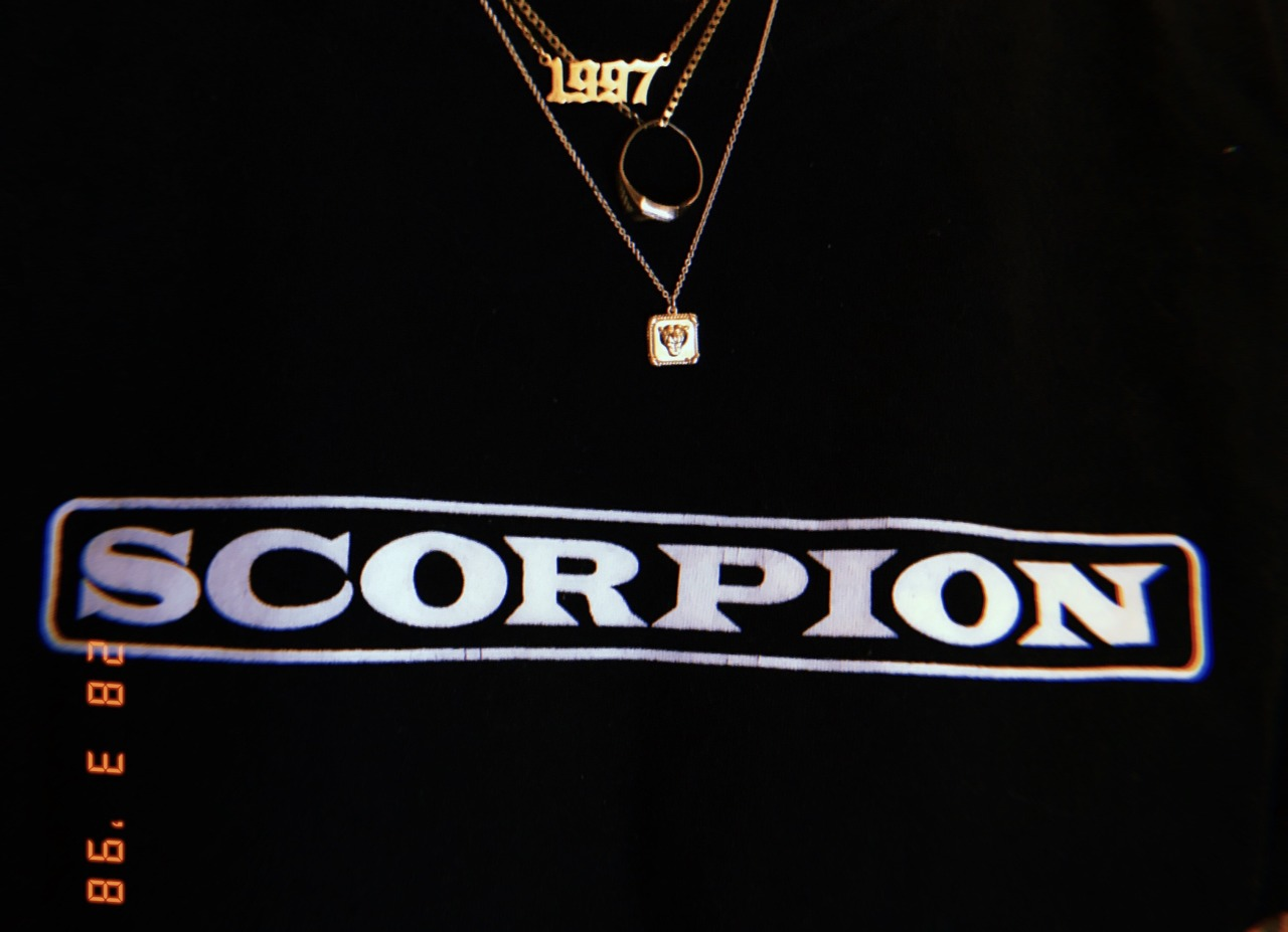 my chains feel complete with my new one #mine#chains#scorpion#drake#1997