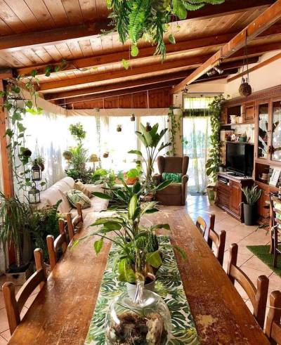 Rejuvenating living room
