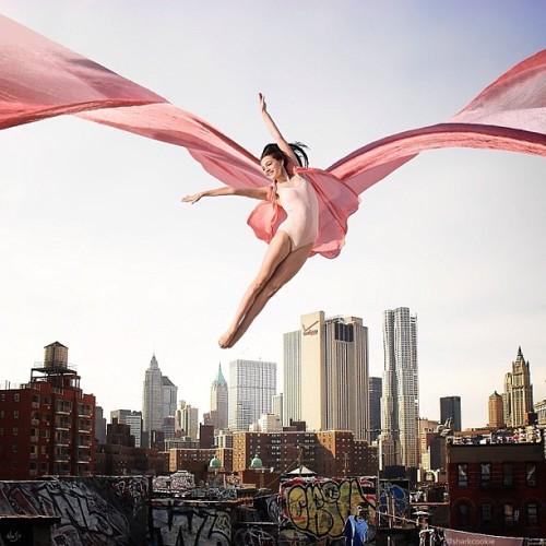 emilia grillasca sharkcookie david hofmann robert jahns photography nois7 instagram dance dance photography dancer photographers photographers on tumblr cool collaboration collab city jump flying