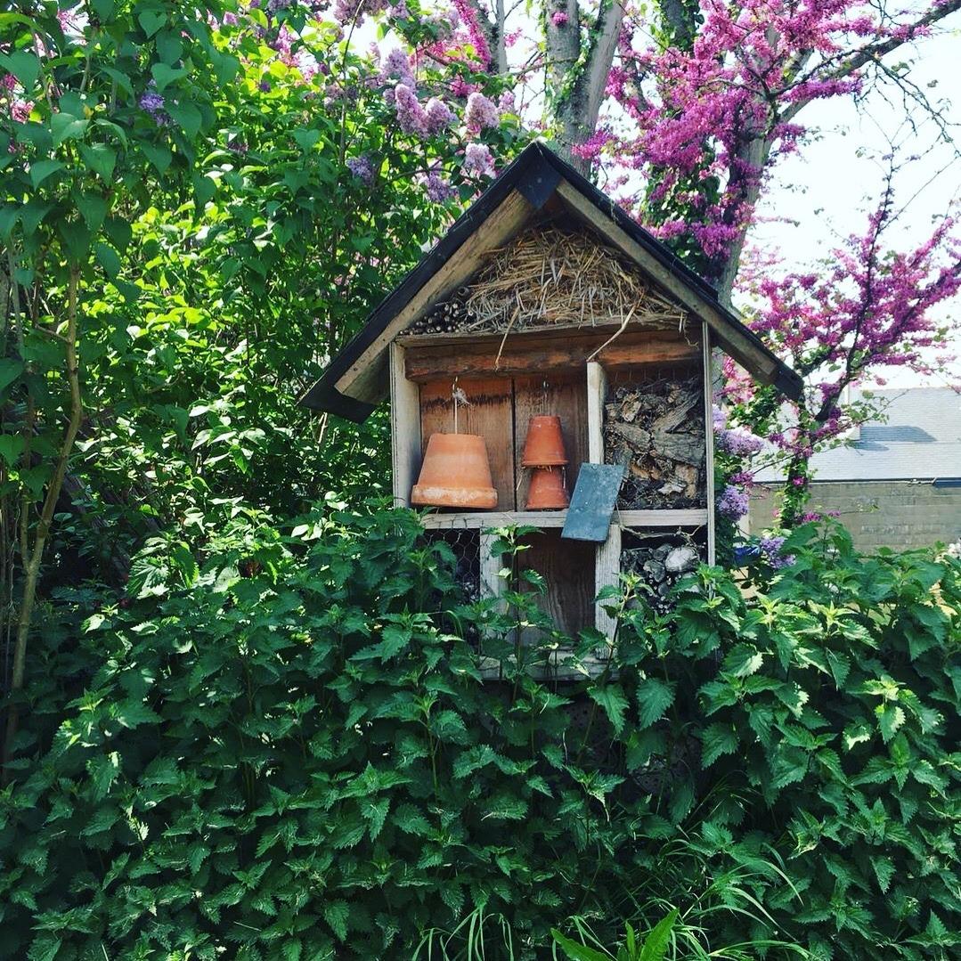 Gardenandcountry: Photo By Garden