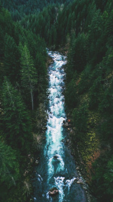 nature vintage tumblr wallpaper