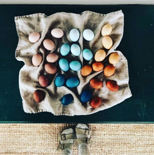 eggs easter eggs colored eggs feets photography follow for more
