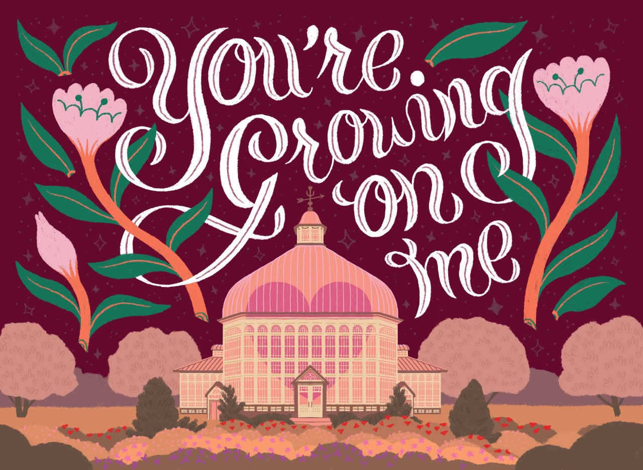 A valentines day card I illustrated for Baltimore Weddings love notes featuring the Rawlings Conservatory in Baltimore! #illustration#valentines#valentines day#flowers#rawlings conservatory#baltimore#floral#hand lettering#drawing#art #artists on tumblr