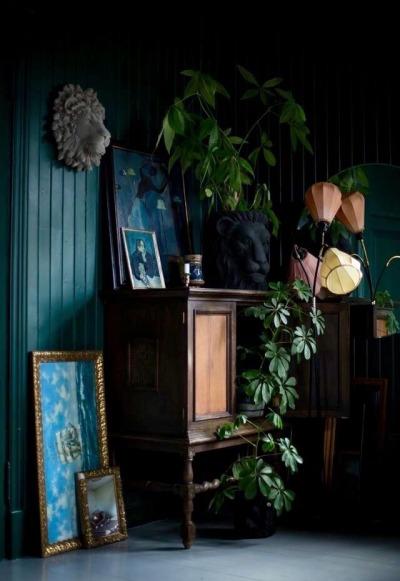 Dark walls with indoor plants