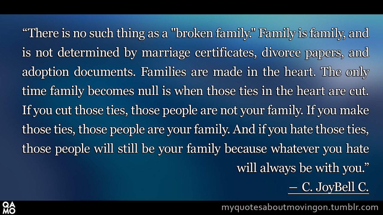 "Broken Family Quotes Tumblr ""There is no ..."