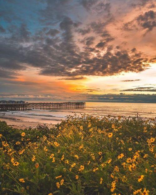 Pacific Beach 📷 @saul_visuals