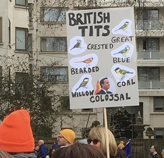 brexit puns | Tumblr