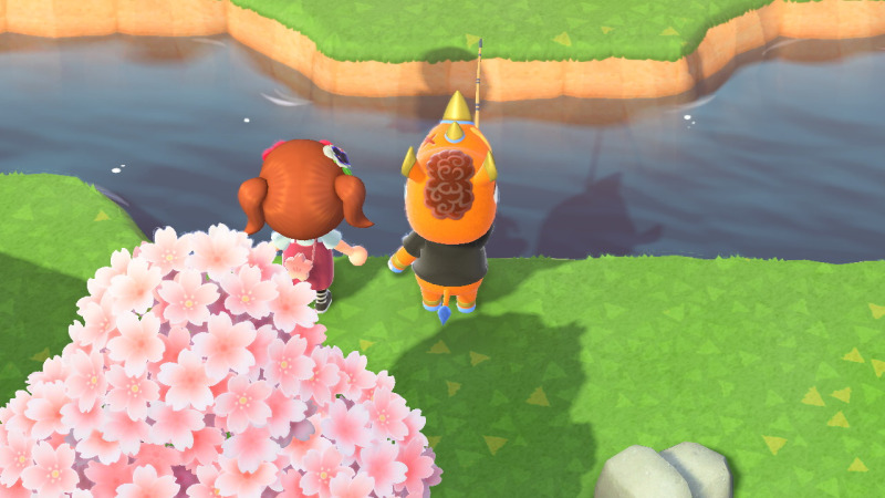 Do you think he'll catch 60+ eggs like we do? #animal crossing#acnh#ac spike#teacup island#queue