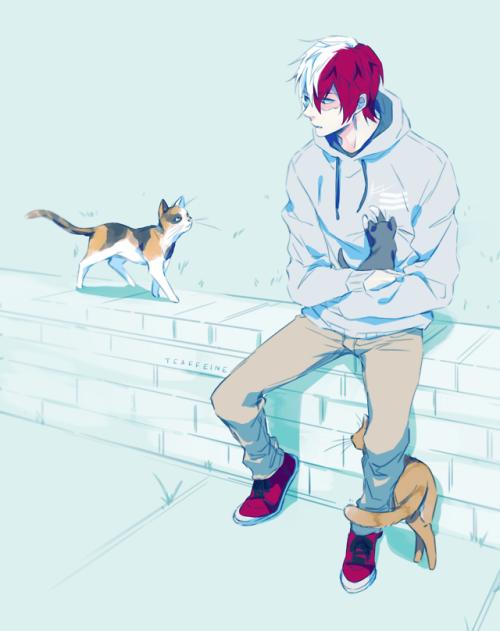Todoroki Shoto Tumblr
