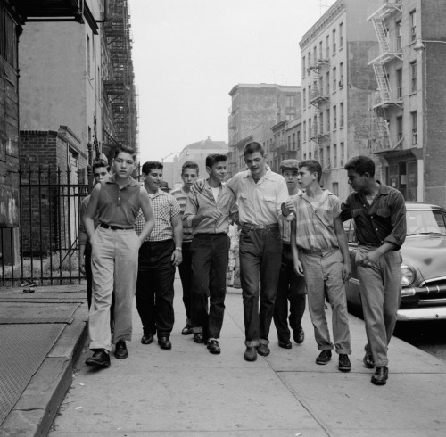 A teenage gang walking along street in New York City. Photoby Carl Purcell, 1955Source #vintage#vintage photos#vintage photographs#1955#1950s#carl purcell