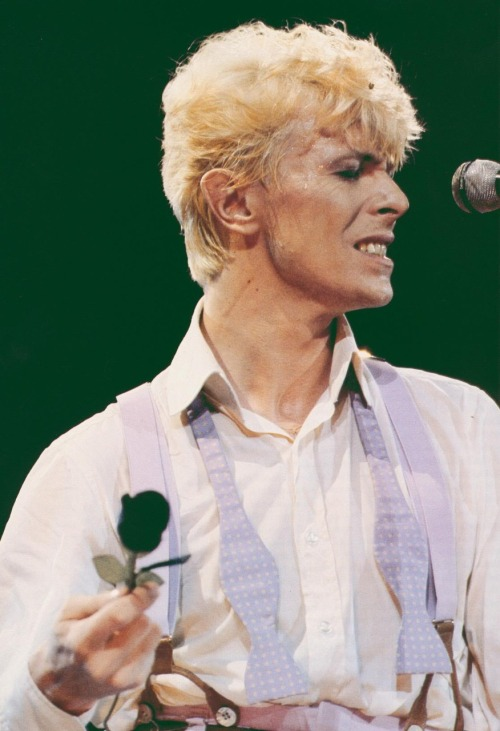 asdfghj;ghkj David Bowie Bowie Serious Moonlight 1983 Serious Moonlight Tour 80s
