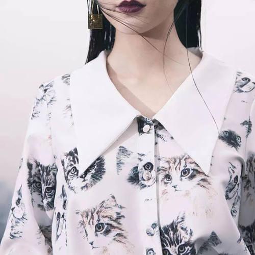 PurpleFishBowl2 cat cats blouse blouses button down