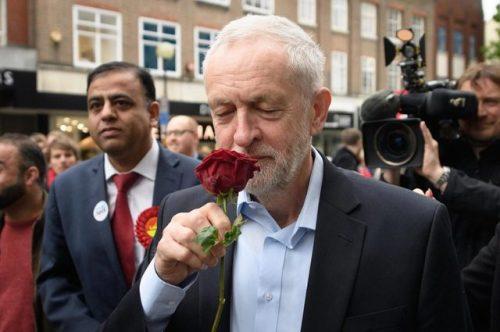 halalcocaine:  halalcocaine:  jeremy corbyn + roses: aesthetic  December 12th VOTE LABOUR