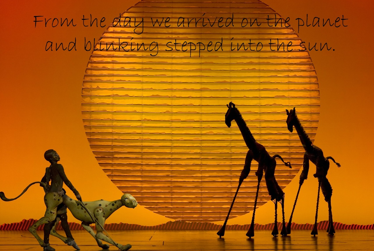 Musical Theatre Quotes — Day 4: A number from the first ...