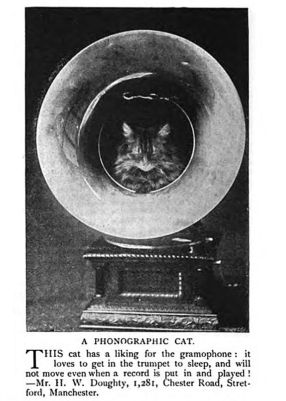 The Strand magazine, England, 1908