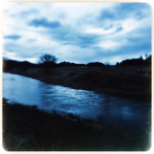 photographers on tumblr original photographers landscape coltsfoot tussilago hipstamatic nature