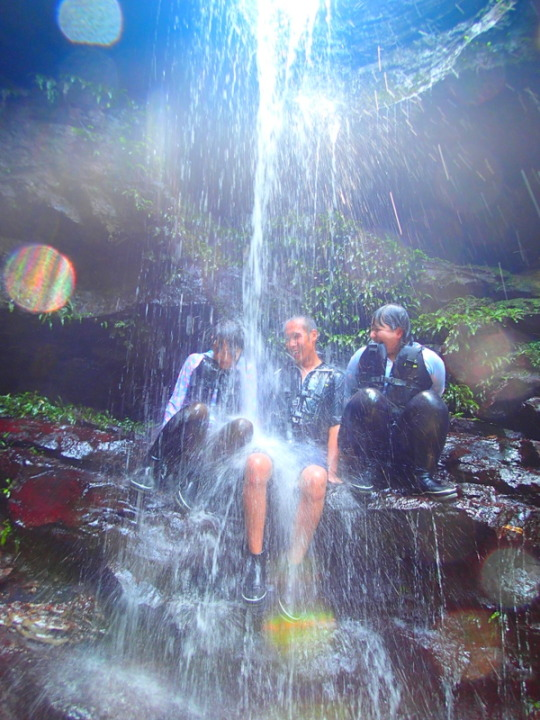 西表ツアーおすすめ人気のSUPでマングローブを漕いでジャングル探検トレッキングで秘境の滝巡り、午後からレッキングで秘境の滝を目指します。大自然のエナジーを体感しよう。石垣島から日帰り参加もOK!です。
