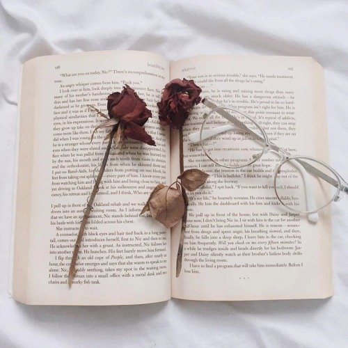 """goghes:  """"I feel as if I had opened a book and found roses of yesterday sweet and fragrant, between its leaves."""" ― L.M. Montgomery, Anne of the Island"""