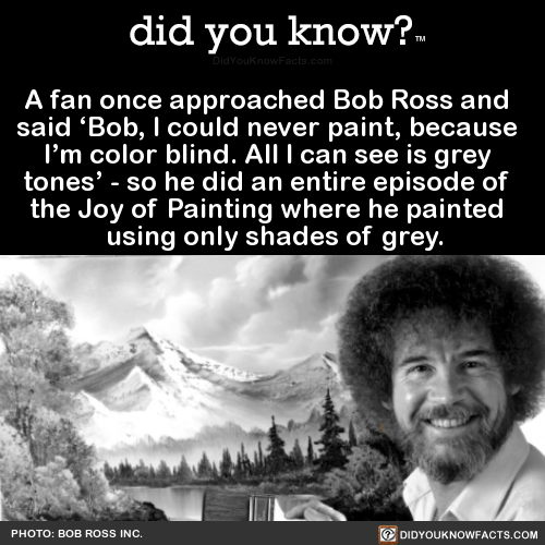 a-fan-once-approached-bob-ross-and-said-bob-i