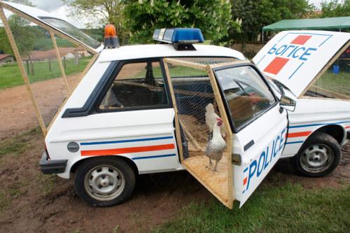Police Car Chicken Coop Funny
