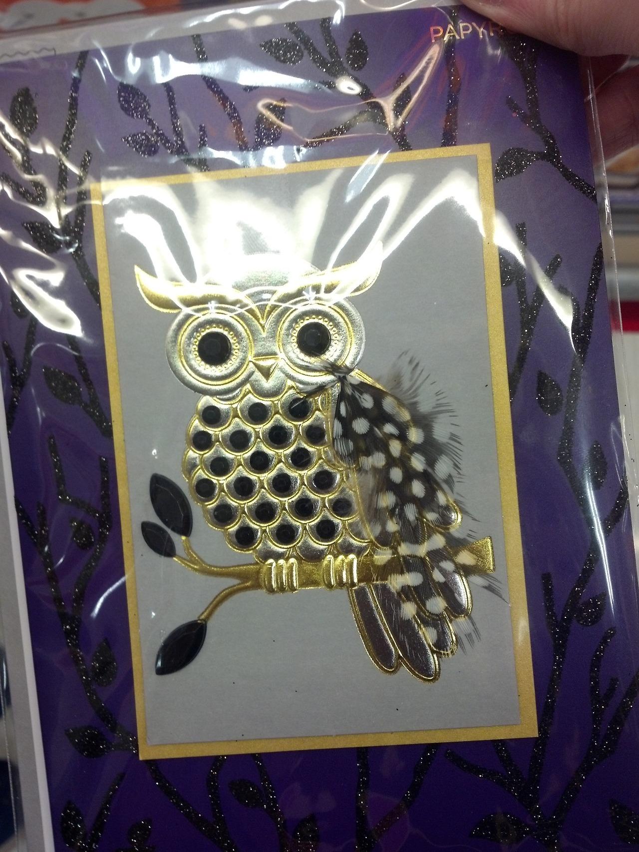 #halloween card#owls#halloween owl#halloween cards#halloween decorations#my photo#my post