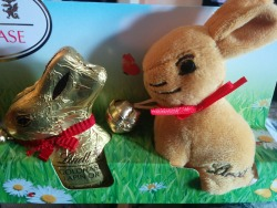 look-at-this-mini-lindt-rabbit-from-tenerife-cant