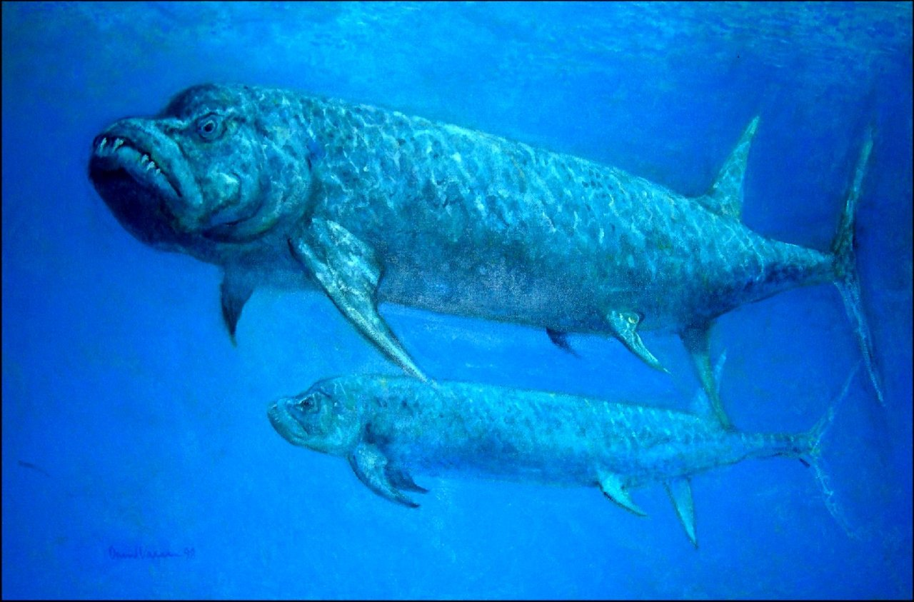All Your Prehistoric Questions Answered — Xiphactinus!