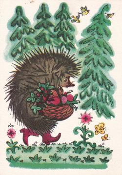 Vintage Soviet postcard (1968), cute hedgehog illustration, animal art print, artist Dmitriyevahttp://ift.tt/1ojZ5uf