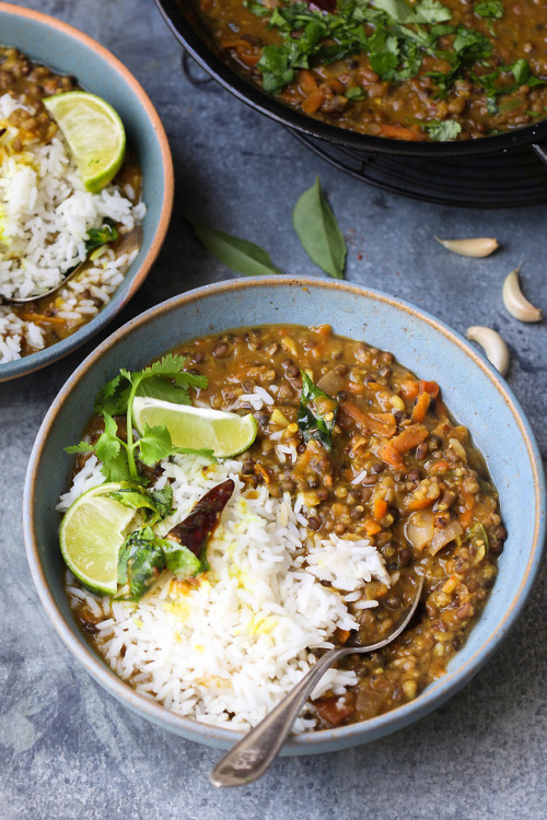 food recipe dinner dal curry lentils onions peppers tomatoes carrots rice vegetarian indian food x