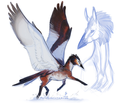 skycowboys pegasus ales arts creature concept i feel the wings are a tad small but hey i had fun i had so much fun there are too many birds to choose from too many good combinations