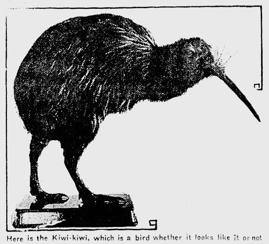 The Winnipeg Tribune, Manitoba, December 29, 1917