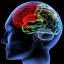 Train Your Brain tumblr blog logo